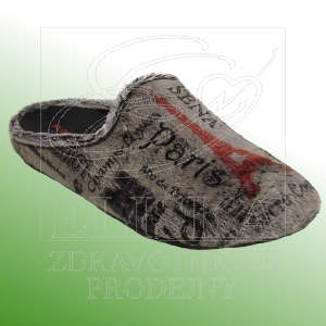 Domácí obuv Florett 02.636/65